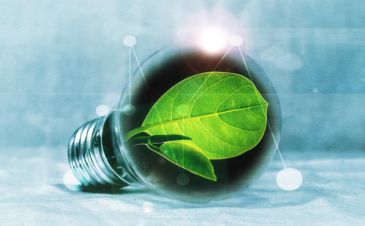 Subsidijos elektros energijos gamybos iš atsinaujinančių išteklių projektams – pagal fiksuotus įkainius